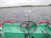Łabędyie