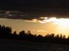 Minesota 2004