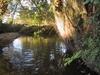 Rzeka Złota