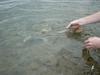 Nareszcie w wodzie