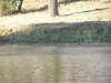 odra2004
