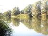 Krajobraz Odry w lecie