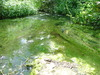 Strumień odpływający z Jeziora Wędromierz do Jeziora Chłop
